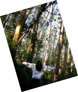forest girl 3