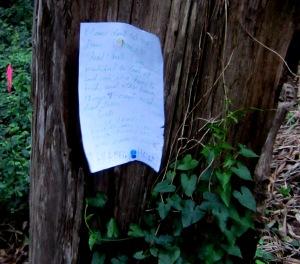 tree-note