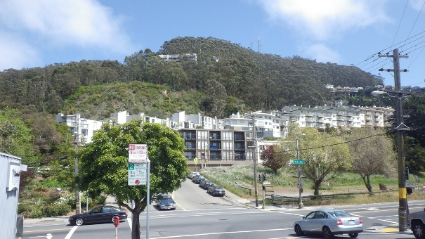 16. West Side of Sutro Forest 1 - Tony Holiday