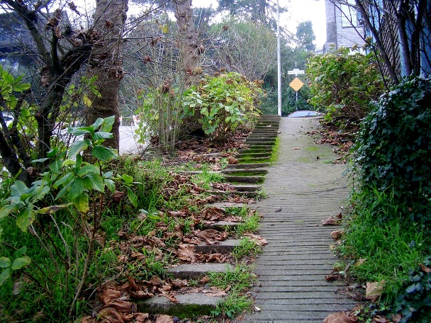 2. Stanyan sidewalk steps up to Belgrave - Tony Holiday
