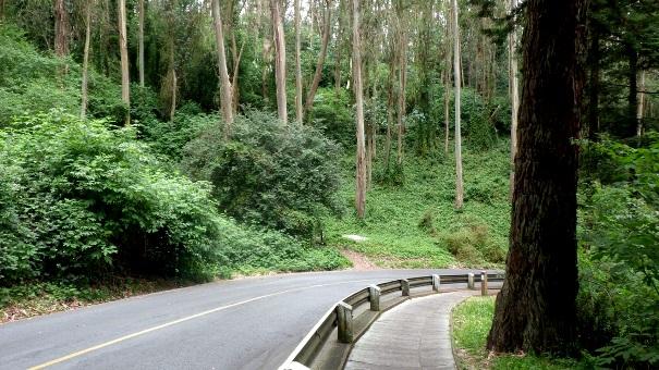 Fairy Gates Trail start - North Ridge trail to left - Tony Holiday