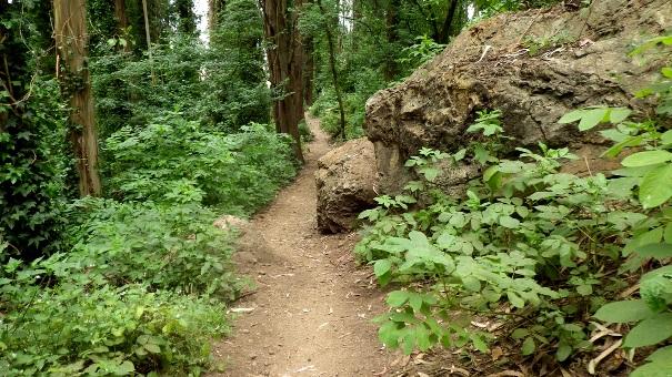 lower historic trail 3 - Tony Holiday