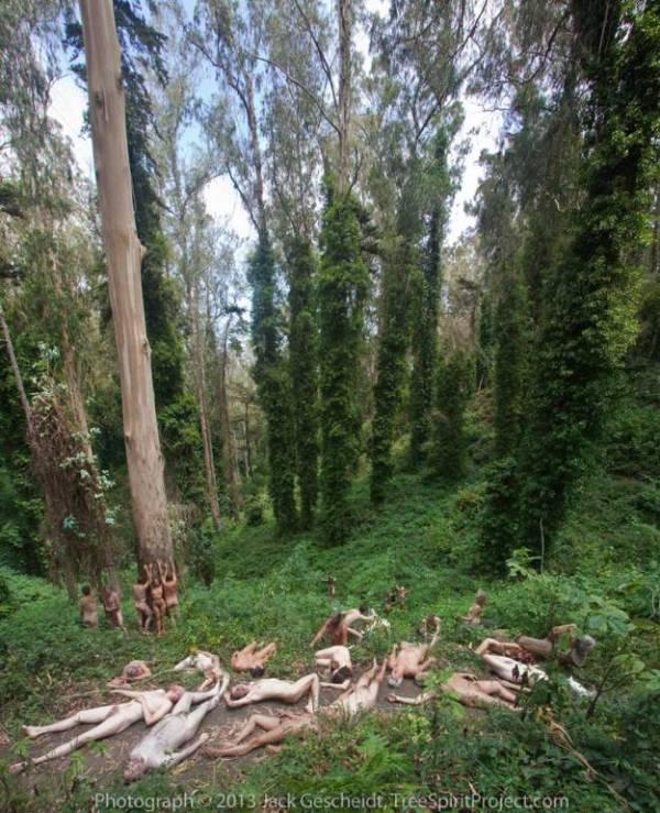 HereToStay_TreeSpiritProject_740p_WEB Jack Gescheidt Treespirit