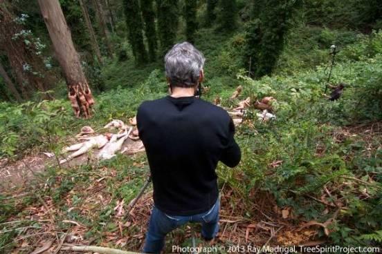 Jack_Gescheidt_TreeSpirit_Sutro_Forest_0026_550p_WEB Jack Gescheidt Tree Spirit Project