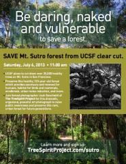 treespiritproject - sutro forest