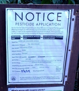 pesticide notice jan 3 2014 imazapyr sutro forest poison oak cotoneaster prunus