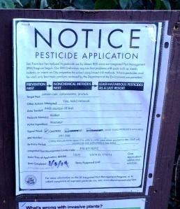 pesticide notice jan 3 2014 imazapyr sutro forest poison oak cotoneaster prunus