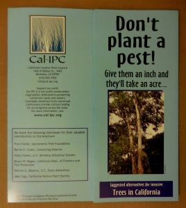 Anti-eucalyptus pamphlet from Cal IPC