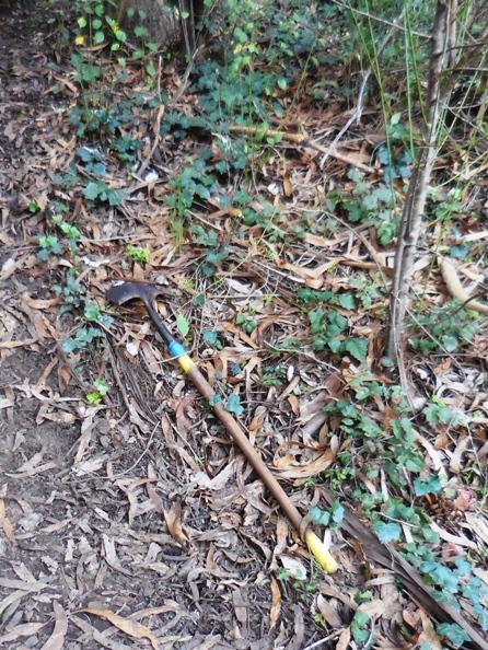 lost spade