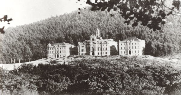 Affiliated Colleges with Sutro Forest in the background sm